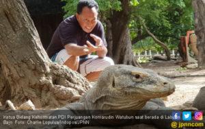 Revoke Risk Investments on Komodo Island